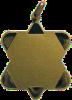 Medaglia Artica in ottone